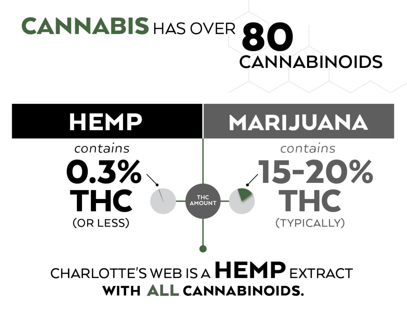 , Cannabis 101: Charlotte's Web v Hemp Seed Oil v Marijuana
