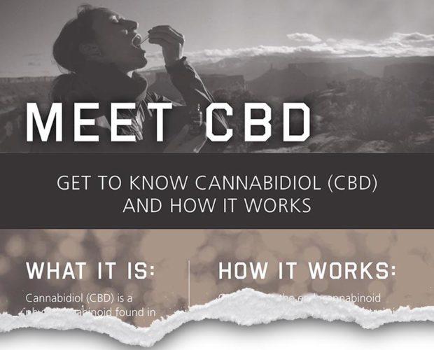 Charlottes Web - Meet CBD